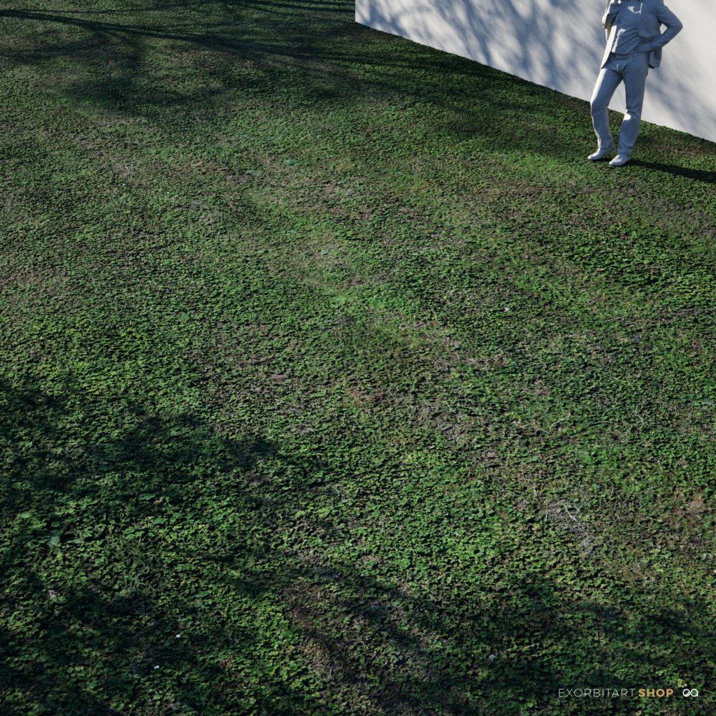 200612_short_grass_bigscale_exorbitart_scenePS-1024x1024 Home